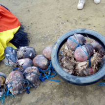 23 Human Skulls Found In Militants' Shrine
