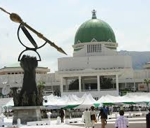 NASS Collapses 2 Peace Corps Groups