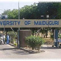 Boko Haram Forces 70 UNIMAID Lecturers To Resign